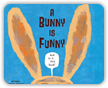 Bunny is Funny Book Cover